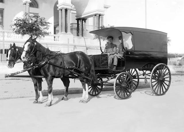 caballo tirando de un carro